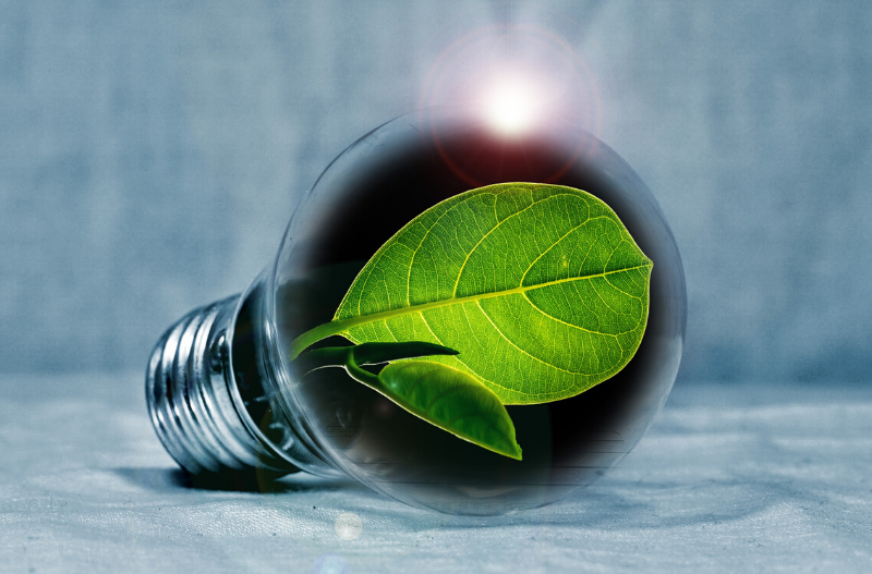 Energy Efficient Rental Property